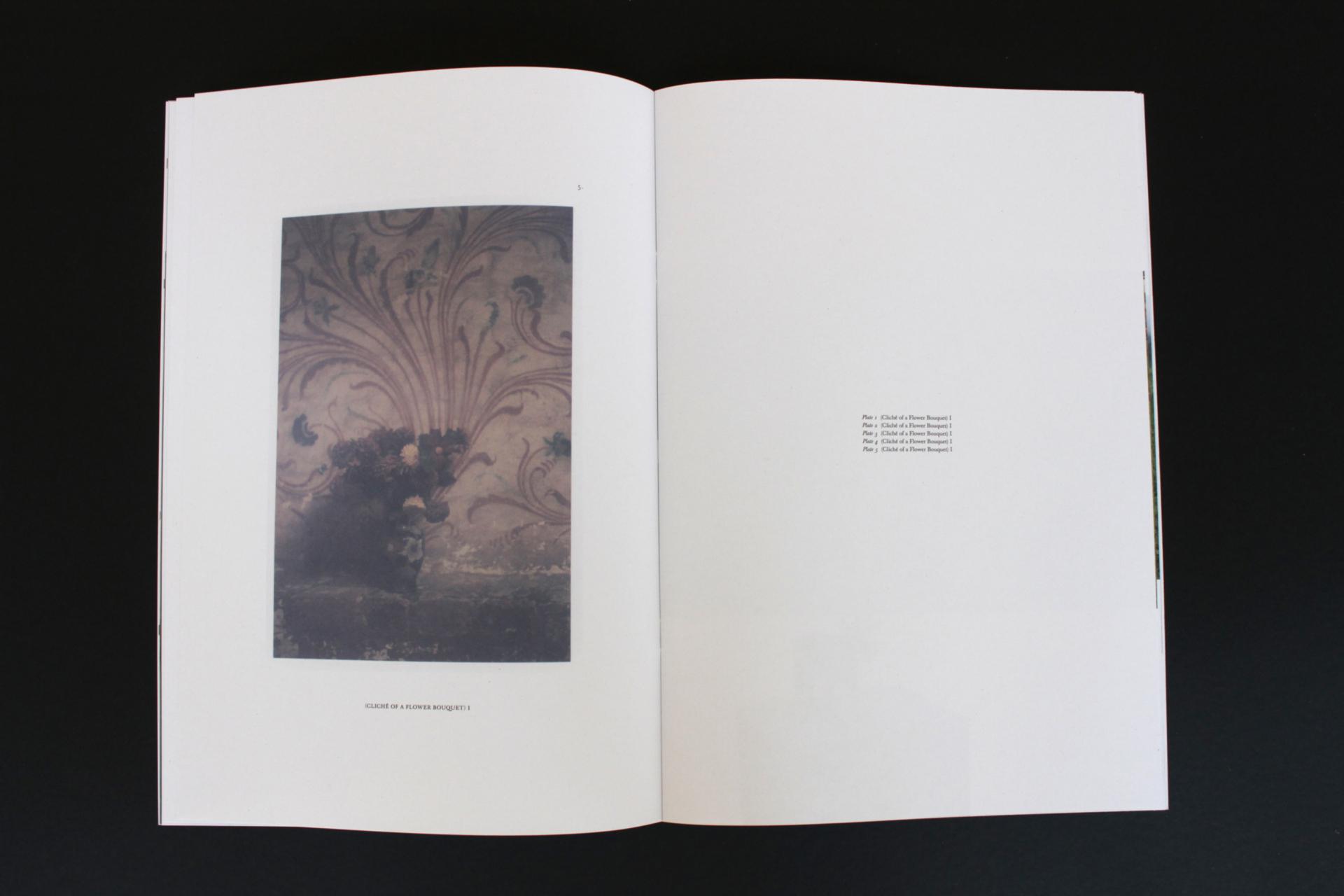 INGA KERBER Schloss Plueschow Publication, 2014