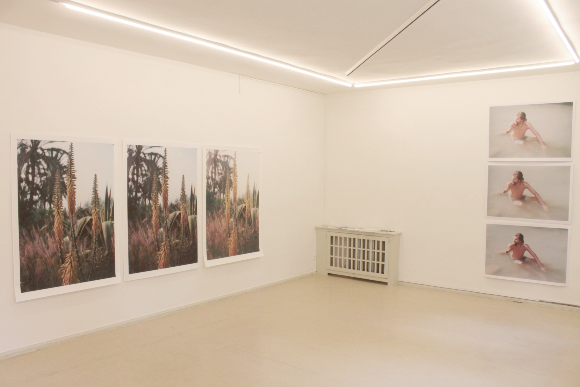 INGA KERBER Exhibitions